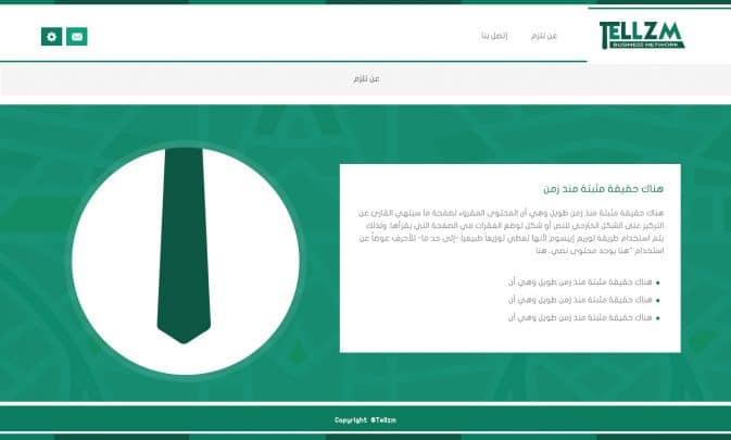 """تصميم شعار وهوية وبرمجة موقع تل زيم """"Tellzm"""" 6"""